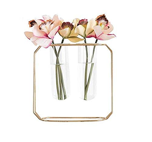 Chytaii 2 Tuben Vase aus Glas,...