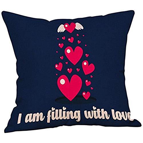 Hose233 Fundas de almohada creativas para el Día de San Valentín, decoración de almohada para el hogar, sofá o dormitorio, fundas de almohada de cumpleaños, festivales, regalos de decoración alrededor de 18 x 18 (C)