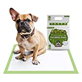 Pogi's Training Pads (20-Count) (24x24in) - Large, Super-Absorbent, Earth-Friendly Puppy Training Pads for Small to Medium Sized Dogs