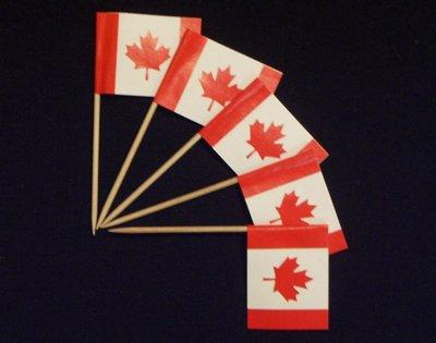 Everflag Zahnstocher : Kanada 50er Packung