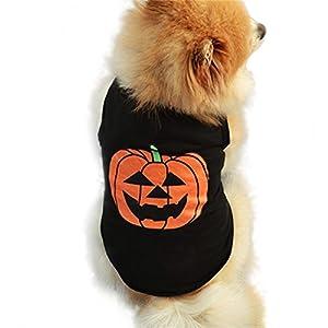 Huifengs de chiot Vêtements Halloween festivals citrouille Petit Chien Chat Animal domestique mignon noir Gilet T-shirt