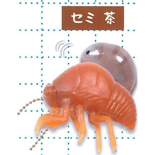 脱皮シリーズ! セミの抜け殻 ぷにゅぷにゅ マスコット [4.セミ 茶](単品)