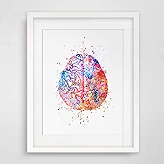 Watercolor Anatomy Brain Wall Art Decor Anatomical Brain Vintage Graphics Art Print Wall Hanging Original Design Brain Printed Artwork 8x10 inch No Frame
