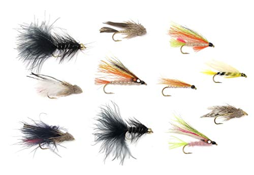 Feeder Creek Fly Fishing Trout Flies -11 Popular Streamers in Many Colors- 22 Wet Flies - Wooly Bugger, Muddler, Conehead, Trout, and More