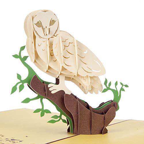 Cardology Pop-Up-Karte - Geschenke für Vogelliebhaber, Scheuneneule, 3D-Geburtstagskarte, 15 x 20 cm, handgefertigte Karten