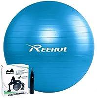 REEHUT Palla da Ginnastica Resistente Fino a 498kg Anti-Scoppio con Pompa per Fitness, Allenamento, Yoga e Pilates -...