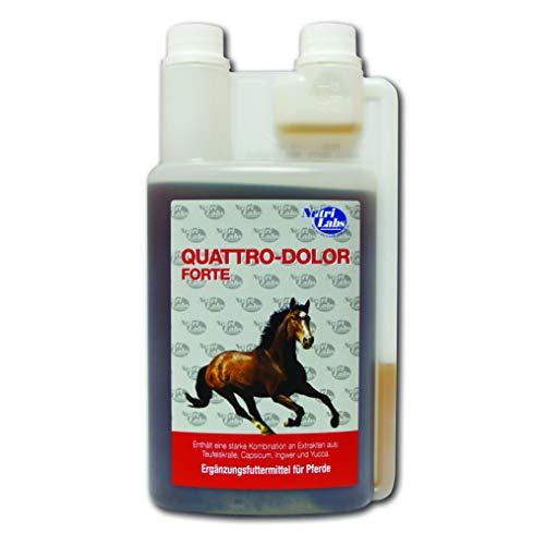 NutriLabs Quattro-Dolor forte Ergänzungsfuttermittel flüssig für Pferd, 1er Pack (1 x 1 l)
