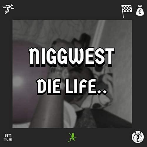 Niggwest