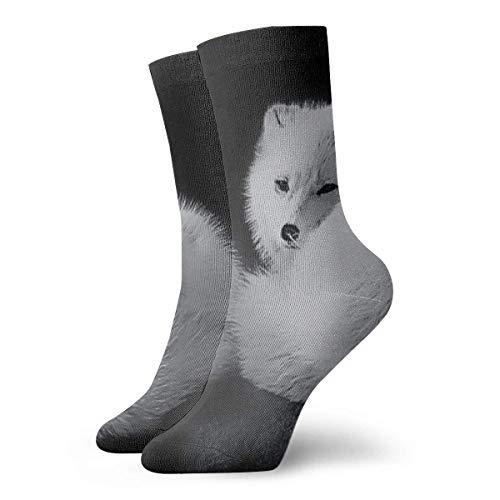 Herren Kleid Socken Schlafen Artic Foxes Winter Warm Dick Gedruckte Casual Cosy Crew Socken