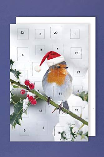 Adventskalender Christlich Karte Grußkarte Weihnachten Winter Vogel 16x11cm