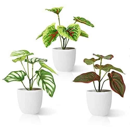 Kazeila Plantas Artificiales Decoracion 15 cm Planta Artificial Pequeña en Macetas Plastico para de la Casa Cocinas Oficinas Interior y Exterior(3Pcs) ✅