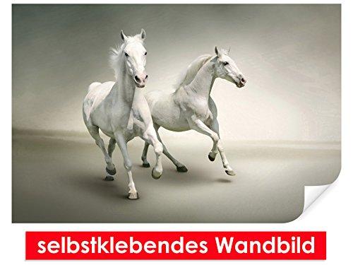 XXL behang zelfklevende muurschildering White Horse 2 – gemakkelijk te plakken – muurprint, wallpaper, posters, vinylfolie met puntlijm voor muren, deuren, meubels en alle gladde oppervlakken van trendy muren 90x60cm wit