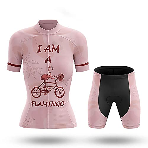 Womens Cycling Jersey And Shorts, Ladies Cycling Suit With 3 Rear Pockets, Elastic Band, Breathable Mesh And Full Zipper(Size:Large,Color:pink)