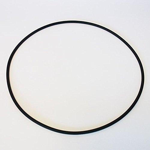 Medipool O-Ring, Dichtung für Filterkessel für Sandfilteranlage Flow 4 SF1015