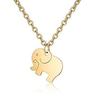 Kette Damen (45 cm) Halsketten für Frauen, Elefanten Anhängern, Filigrane Kette, Freundschaftskette, Glücksbringer als Weihnachten Geschenk