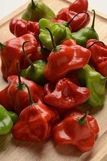 mad hatter pepper