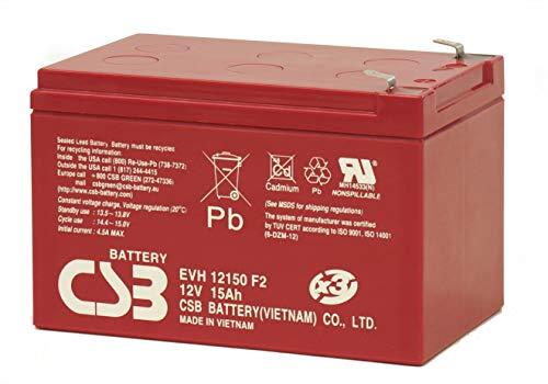 WSB Battery Akkusatz 48V Akkupack für Elektro Scooter 4X 12Volt 15Ah CSB Akku, kompatibel Mach1, SXT, MZ Charly