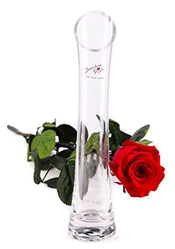 """Rosen-Te-Amo – Infinity echte Rose mit hochwertigen """"Diago"""" Vase und Grußkarte zum Herunterladen; Konservierte Blumen - Geschenk Set Für besonderen Anlässe geeignet"""