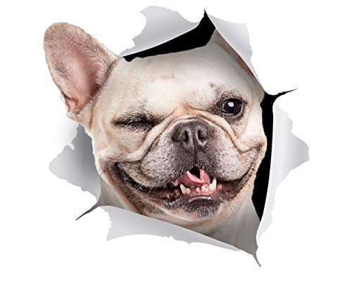 Winston & Bear - 2 Pack - 3D Dog Stickers - Winking French Bulldog Sticker for Wall, Fridge, Toilet and More - Retail Packaged