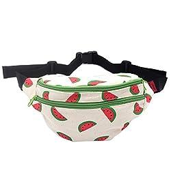 """creativeASIN=B01MXMWEXO&linkId=6dec0d054237aa7a85f069335b0f3988""""] Fanny Pack Watermelon Hip Bag Waist Bag Canvas Bum Belt Hip Pouch Bags"""
