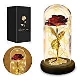 Rose - Beauty and The Beast Rose Kit, Lasts Forever Rose in A Glass Dome and Wooden Base, LED Light String on The Red Galaxy Rose Gift for Women, Wedding,Valentine's Day, Anniversary and Birthday
