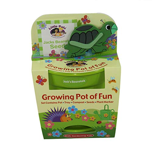 Children's Grow Your Own Jack's Beanstalk with Turtle Plant Marker