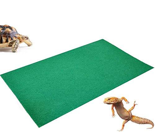 Tfwadmx Extra Large Reptile Carp...