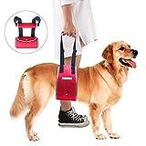 PETTOM Tragehilfe Hund Rehabilitation Geschirr Hund Weiches Nylonmaterial Einstellbar Design Hundegeschirr Tragehilfe gut für Alte Behinderungen oder Arthritis und Verletzte Hunde Tragehilfe