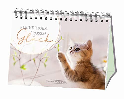 Kleine Tiger, großes Glück!: Spiralbuch