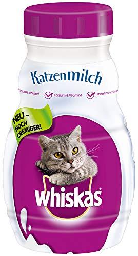 Whiskas Katzenmilch für Katzen ab 6 Wochen – Leckerer Snack für eine glückliche Katze – Laktosefrei und leicht verdaulich – Vorratspack mit 15 Flaschen à 200ml