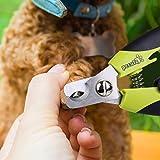 Zoom IMG-1 pecute tagliaunghie cane e lima