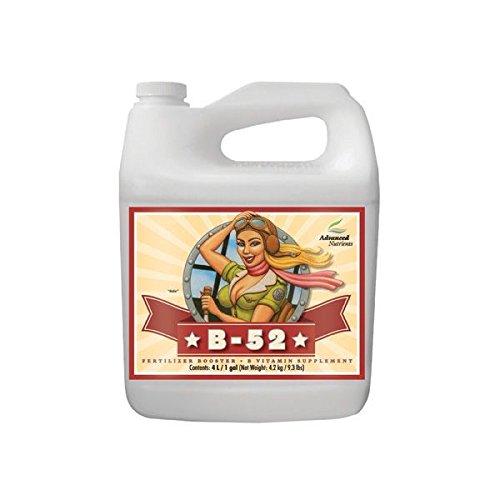Advanced Nutrients - B-52-5L