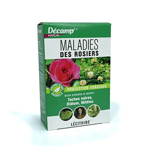 Traitement fongicide pour rosiers 30 gr - Décamp Radical