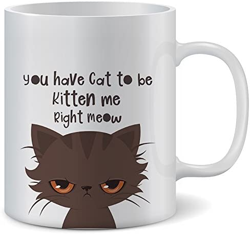 Funny Cat Mug - You Have Cat To Be Kitten Me Right Meow | Premium Coffee Mugs With Funny Cat Sayings | 11 Ounce Ceramic Mugs. A Great Birthday Surprise for Cat Lovers Kitten Stuff, Mom Tea
