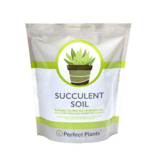 All Natural Succulent and Cactus Soil Mix by Perfect Plants | Made in The USA | 4 Quarts for All Succulent Varieties | Formulated for Proper Drainage