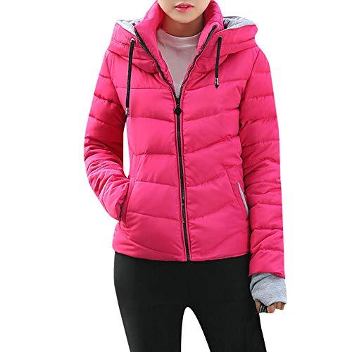 SEWORLD - Sportoberbekleidung für Damen