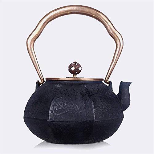 FMOGE Teekanne, Japanische Art Teekanne...