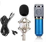 Condenser Microphone for Professional Studio