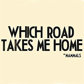 Which Road Takes Me Home