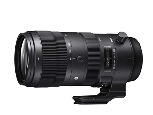 SIGMA70-200mmF2.8DGOSHSM SportsS018 CanonEFマウント Full-Size/Large-Format