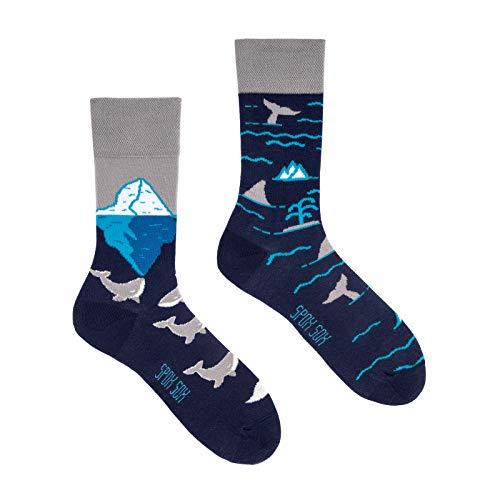 Spox Sox Casual Unisex - mehrfarbige, bunte Socken für Individualisten, Gr. 40-43, Arktische Wale