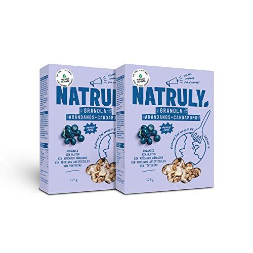 NATRULY Granola BIO de Frutos Secos y Semillas Sin Cereales, Sin Gluten y Sin Azúcar Refinado, Vegana, Sabor Arándanos -Pack2x325g