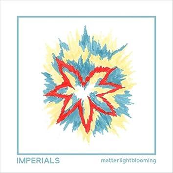 Matterlightblooming