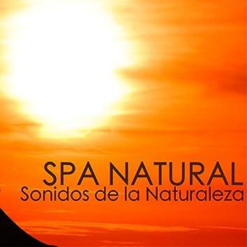 Spa Natural - Canciones Relajantes con Sonidos de la Naturaleza para Escuchar en Casa