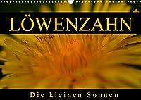 Loewenzahn - Die kleinen Sonnen (Wandkalender 2022 DIN A3 quer): Loewenzahn in jedem Lebensstadium (Monatskalender, 14 Seiten )