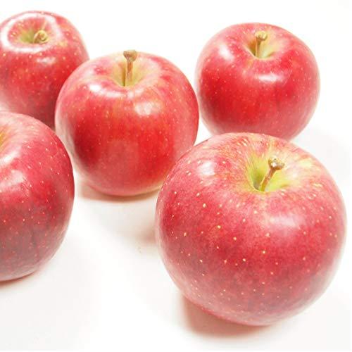 【りんご/千秋 3kg】福島県 低農薬栽培!