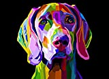 Diamond Painting Adult Painting Kits Colorful Weimaraner Dog Art Style Home Bedroom Living Room Art Wall Decoration 16'x20'