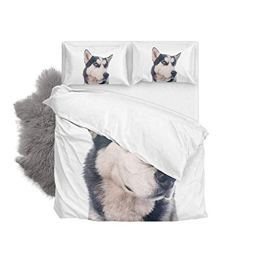 Soft Quilt Bedding Set Funny Husky Dog Duvet Cover with Pillowcases Set 2 PCS 155 x 220 CM, Full Size