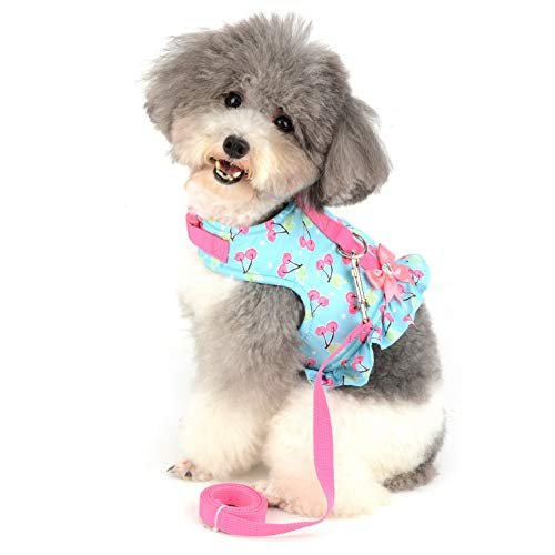 SMALLLEE_LUCKY_STORE Bow Cherry Print Cat and Small Dog Harness Dress with Leash for Girls Adjustable No Pull Escape Proof Soft Walking Jacket Waterproof Puppies Kitten Harness Vest Outdoor,Green XS