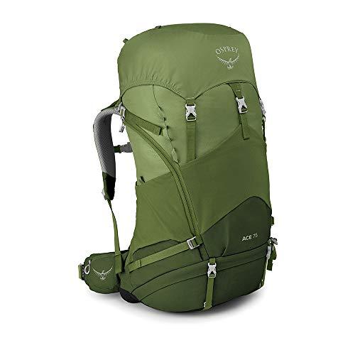 Osprey Ace 75 Wanderrucksack für Kinder, unisex - Venture Green O/S